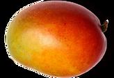 mango6.png