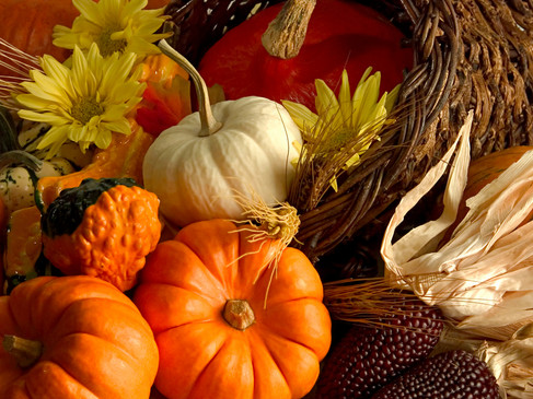 Thanksgiving Long Weekend Hours; Closed October 11th, 2021