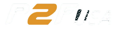 Power2fly USA logo_clipped_rev_1.png