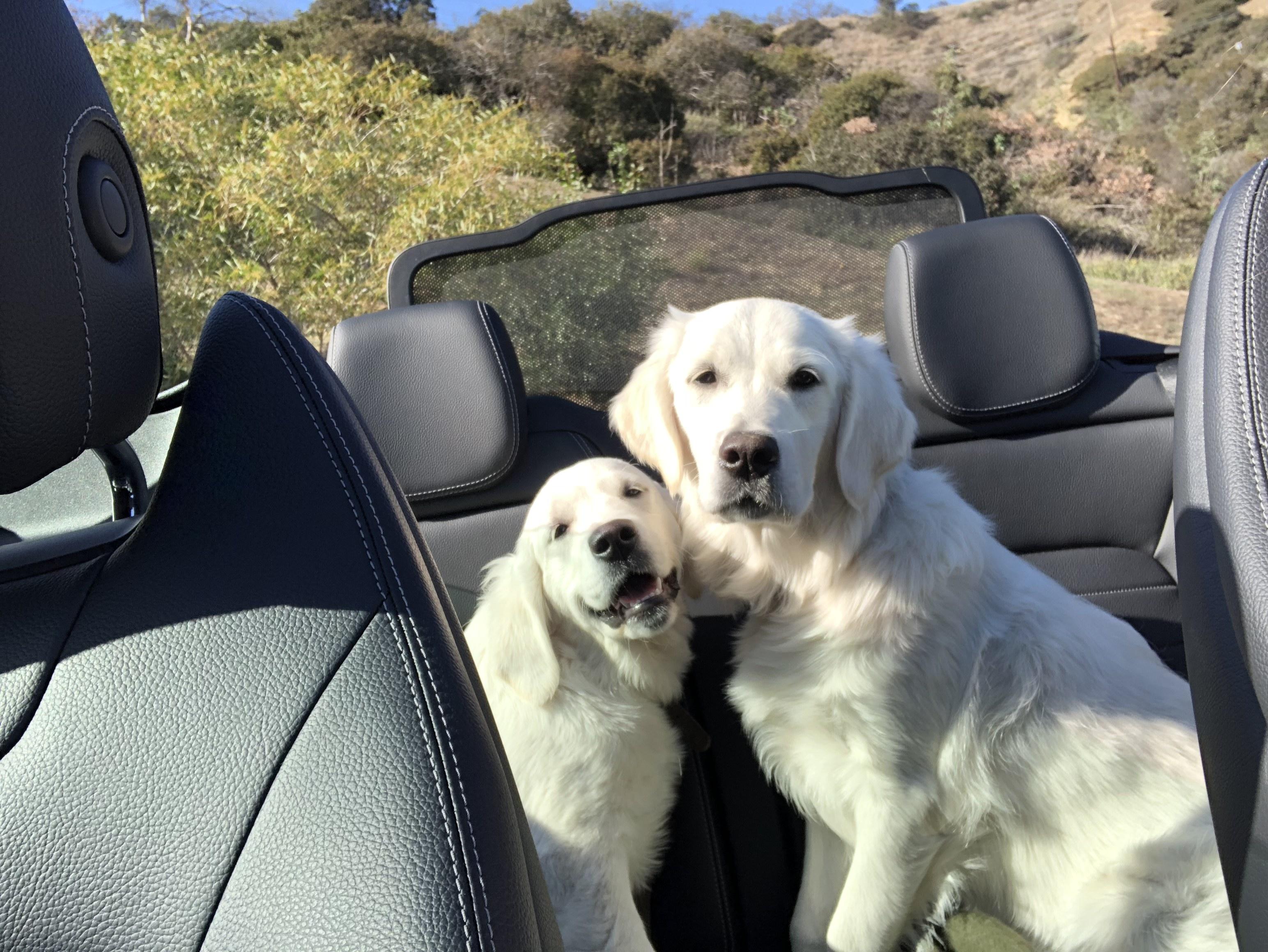 Doris and Agnes