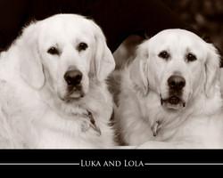 Luka and Lola