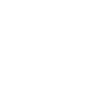 The Healthy Gaming White.png