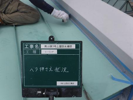 DSCF8581.JPG