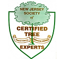 Certified Tree Experts