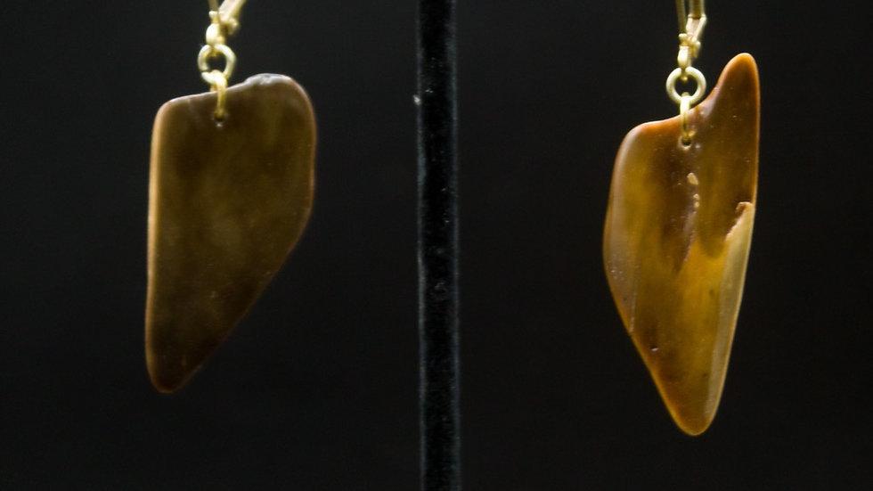 Fossilized Ivory Earrings