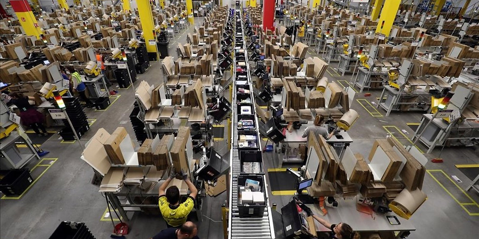 Amazon company visit (27.01)