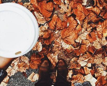 Fall in Kamloops