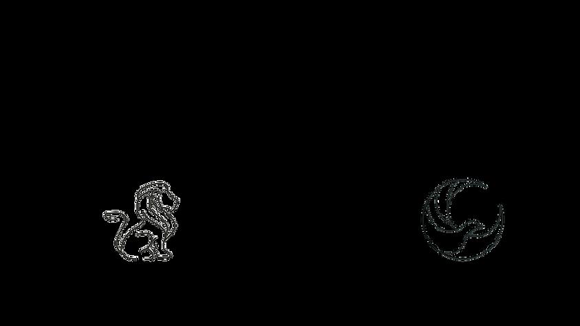 motion creative logo white 1080p.png