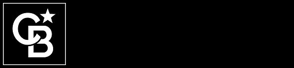 Logo_147042_High_Country_Realty_HZ_STK_B