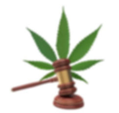 cannabidiol-legal-status1.jpg