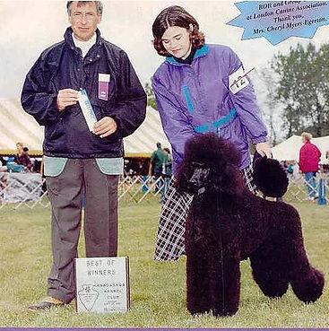 Jenny earns ribbon at dog show