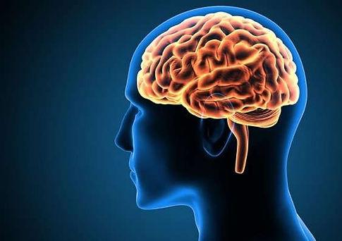 20-neuroscienti.jpg