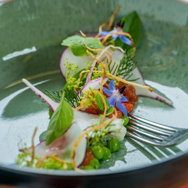 Frühlings- Salat