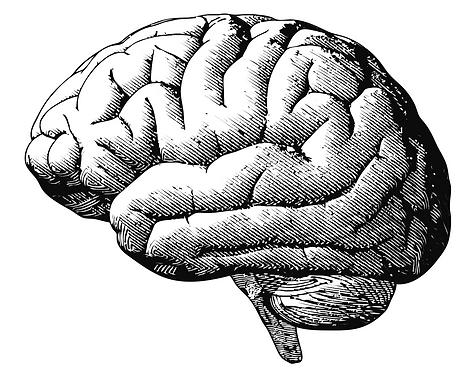 braingraving.png