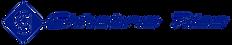 logo blue .png