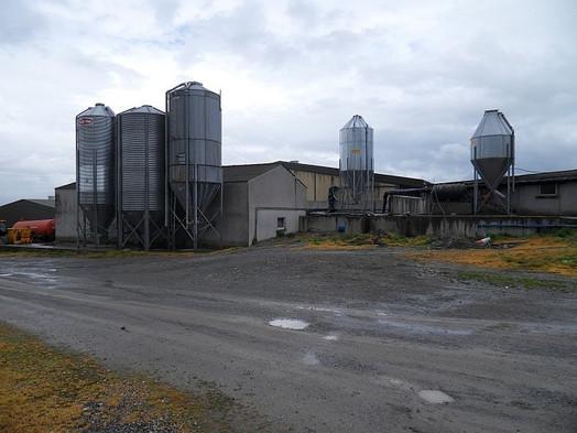 horan_pig_farm.jpg
