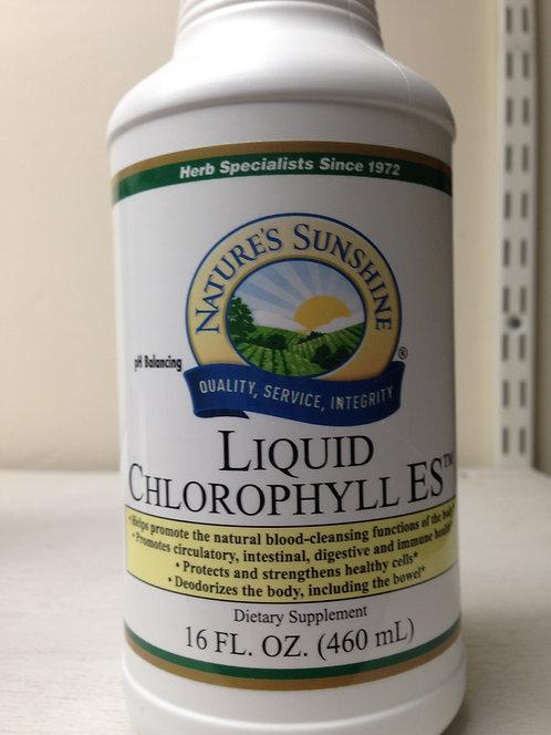 Liquid Chlorophyll 16oz
