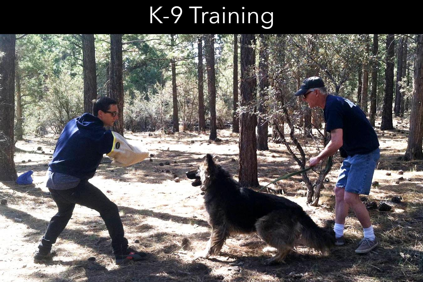 Big Bear Canine School K-9