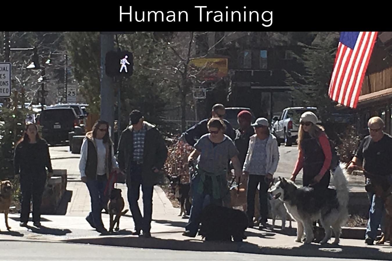Human Training
