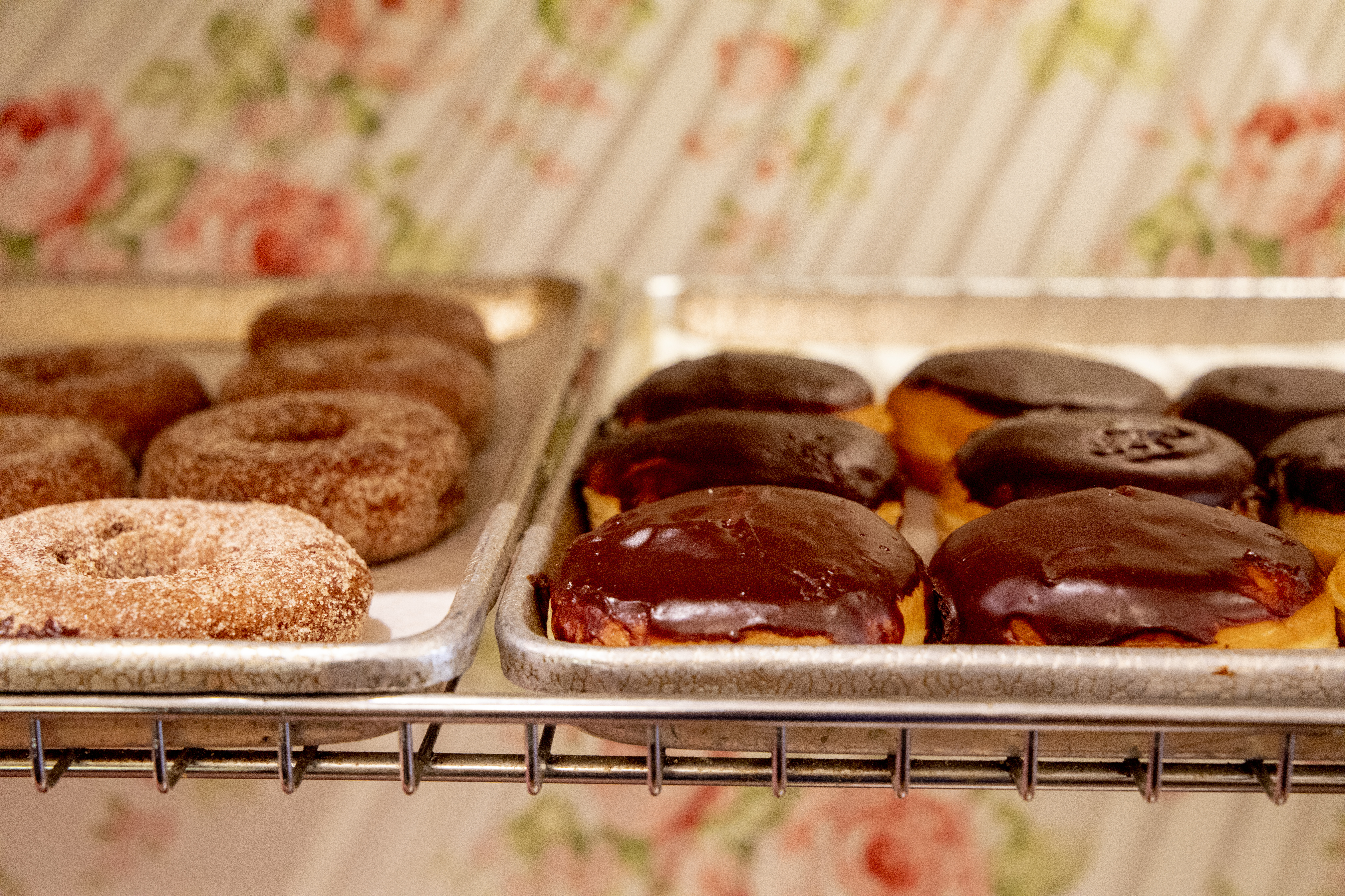 Assorted daily donuts