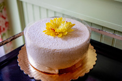White dusted cake