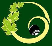 Central Otago Bowls logo.jpg
