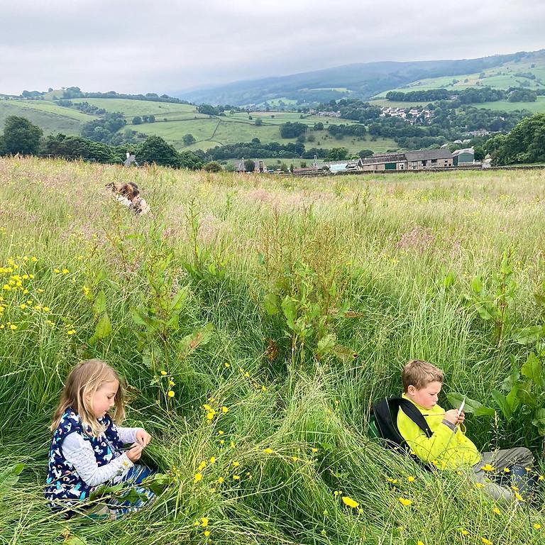 Wild at Heart - Children's Creative Summer Camp