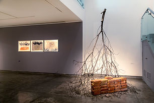 Gallery Espace-image-3 - Gargi Gupta.jpg