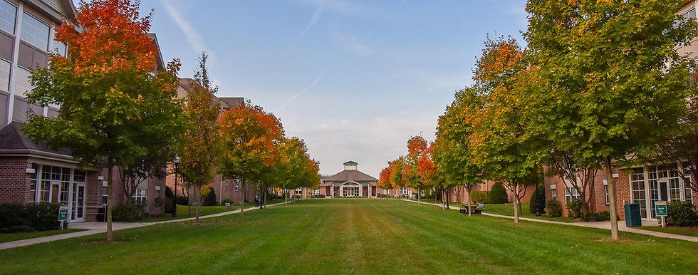 stevenson university.jpg