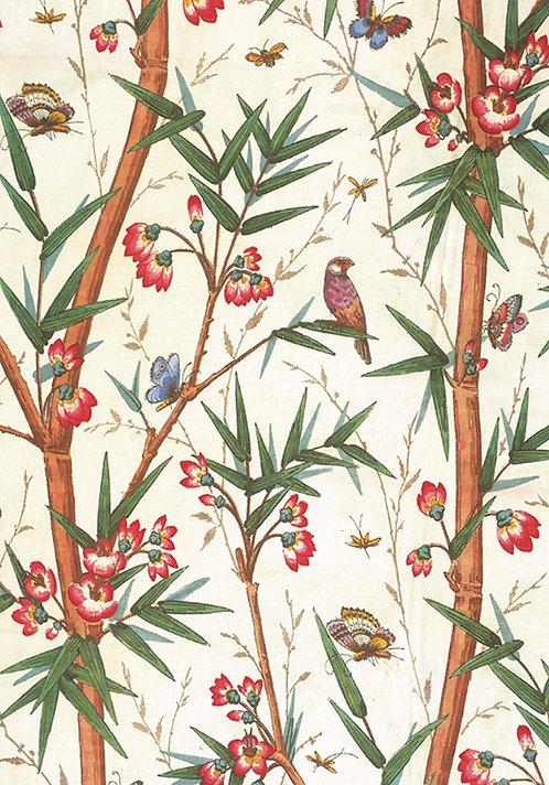 Bamboo & Birds Card Pack