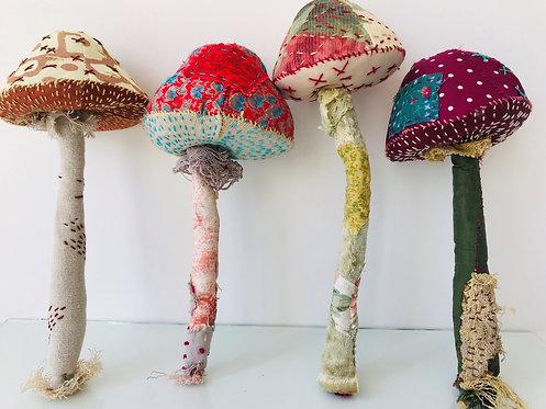 Fungi Workshop