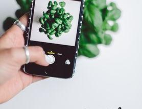 Les  5 apps éco-responsables à télécharger : fais un clic pour la planète !