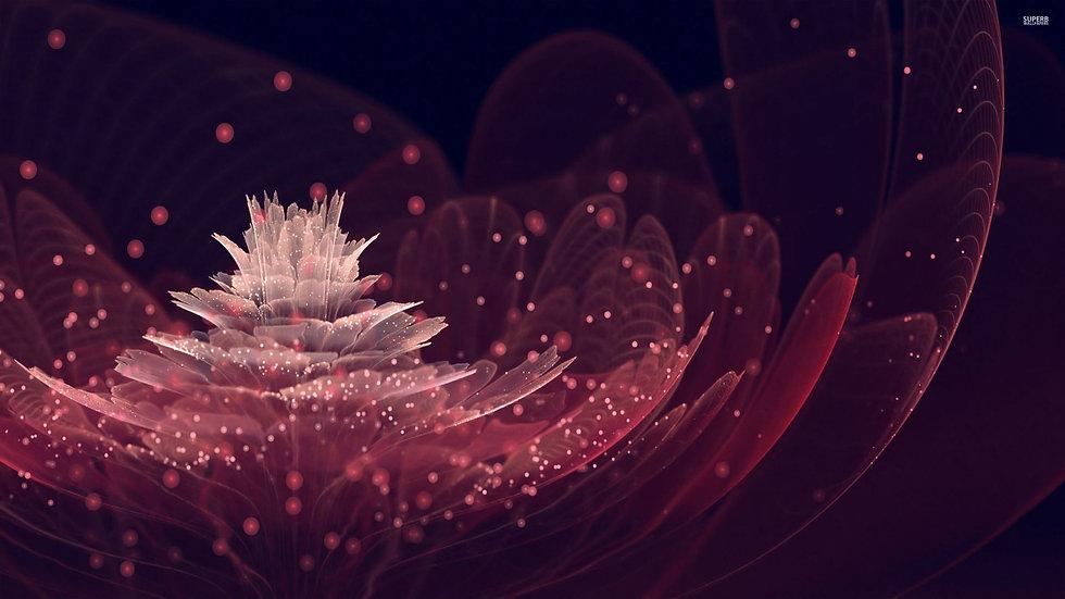 fractal-flower-28411-2560x1440.jpg