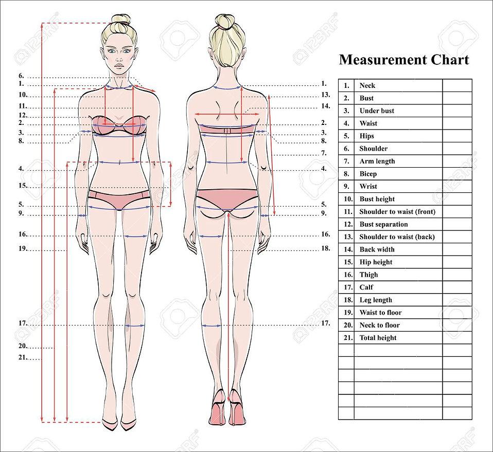 97129644-woman-body-measurement-chart-sc
