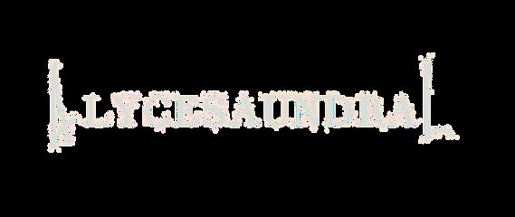 AlyL Logo_edited_edited.png