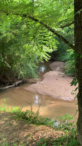 Camp Creek on a Spring Day