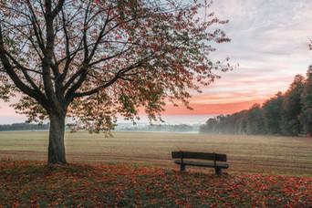 Herbst in den Baumbergen