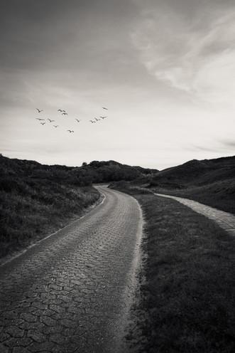 Straße durch die Dünen von Spiekeroog