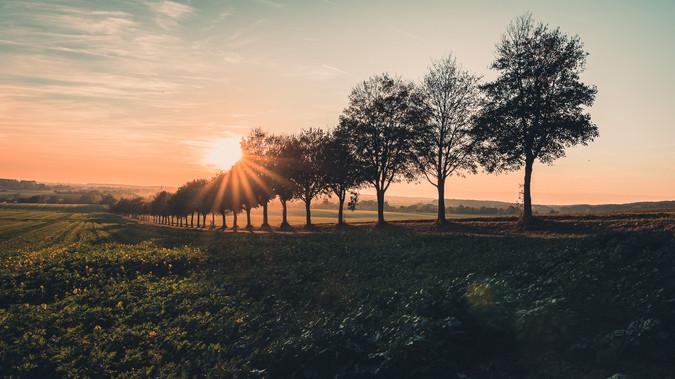 Sonnenuntergang im Stevertal
