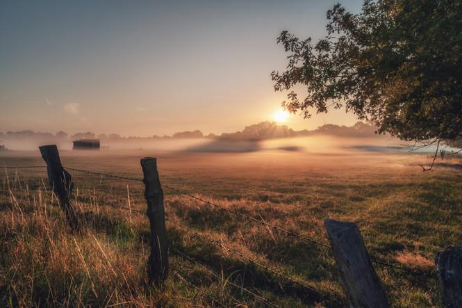 Sonnenaufgang in den Riselfeldern