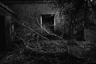 Abandoned Cottage, Co. Leitrim 2019
