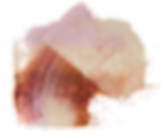 Palette Knife 2.png