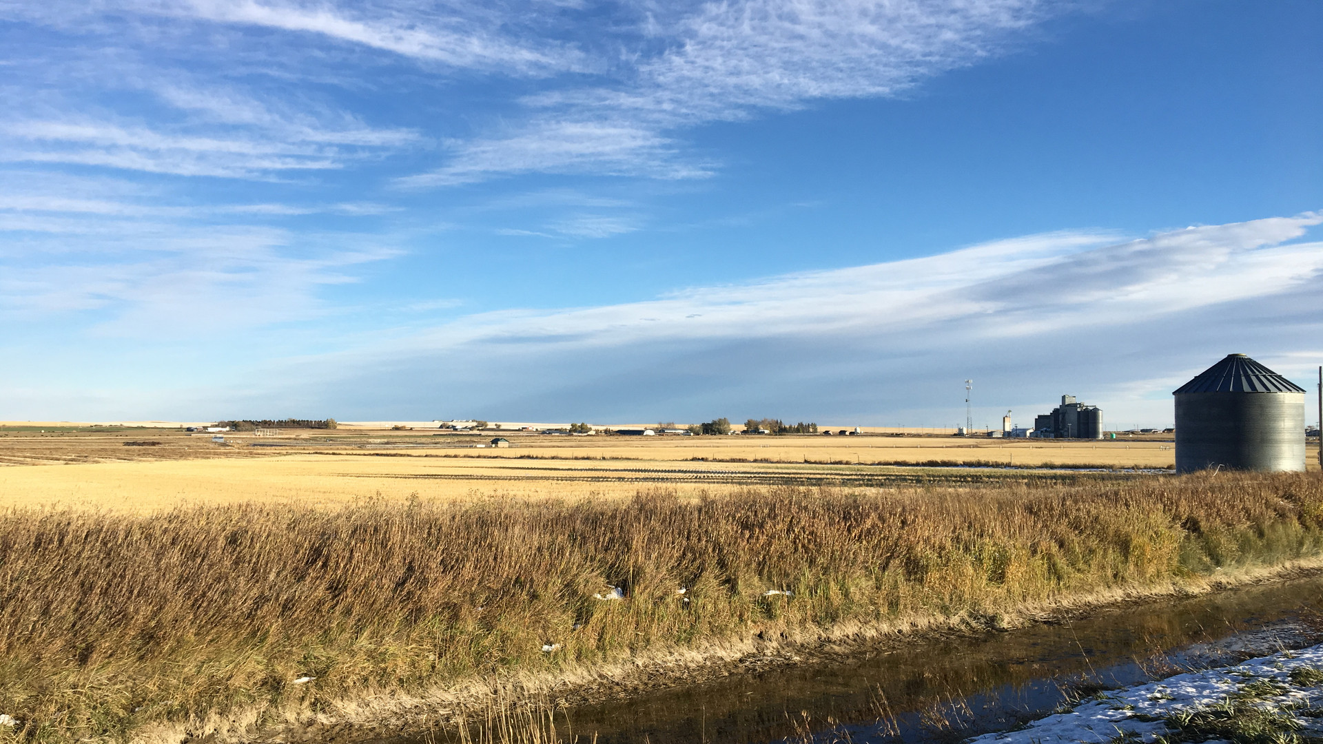 Valier Grain Field.JPG