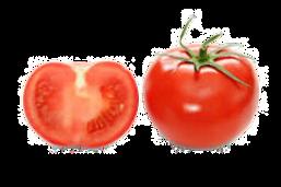 salsa%20recipe%20cache_2473949296_edited