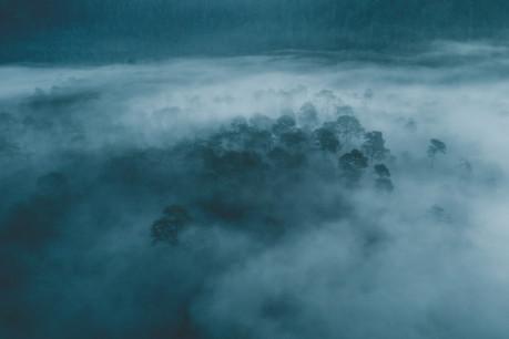 Lagunas de Zempoala.