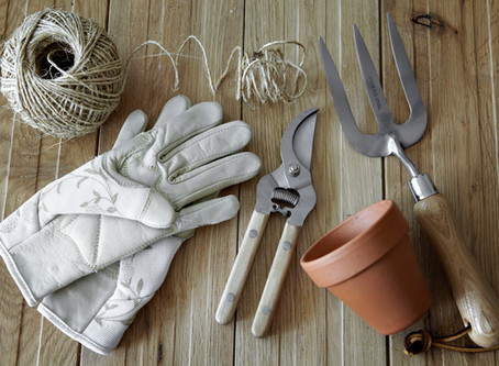 Garden Jobs for the August Bank Holiday Weekend