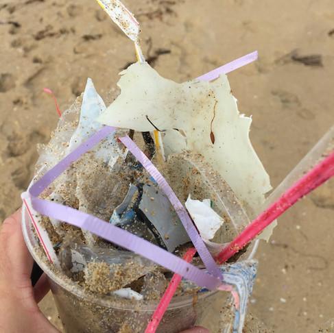 Effectiveness of Beach Clean-Ups by Joyce Vu