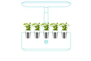 die sofort bereiten pflanzen-pods sind düngerfrei, nährstoffreich und kompostierbar