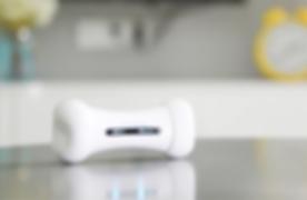 wickedbone ist ein automatisiertes und interaktives spielzeug für hunde, welches die form eines knochens hat. das gadget kann einerseits mit der app gesteuert oder so eingestellt werden, dass es automatisch und ohne steuerung mit dem hund spielt. dabei können verschiedene modi verwendet werden. verbunden werden knochen und smartphone via bluetooth. die reifen, die in 5 verschiedenen farben verfügbar sind, können abgenommen, gereinigt oder ausgetauscht werden.