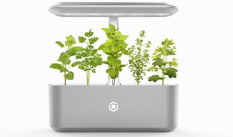 der ava byte ist ein von der nasa inspirierter, smarter garten für zuhause. mit den dazugehörigen pods fällt es nicht mehr schwer, seine eignen kräuter, pilze und vieles mehr zu züchten. durch eine komplette automatisierung müssen die pflanzen nicht gegossen oder das licht angeschaltet werden. lediglich der wassertank muss gefüllt werden. mit der dazugehörigen app kann man die pflanzenart einstellen und der ava byte passt die pflege automatisch an.